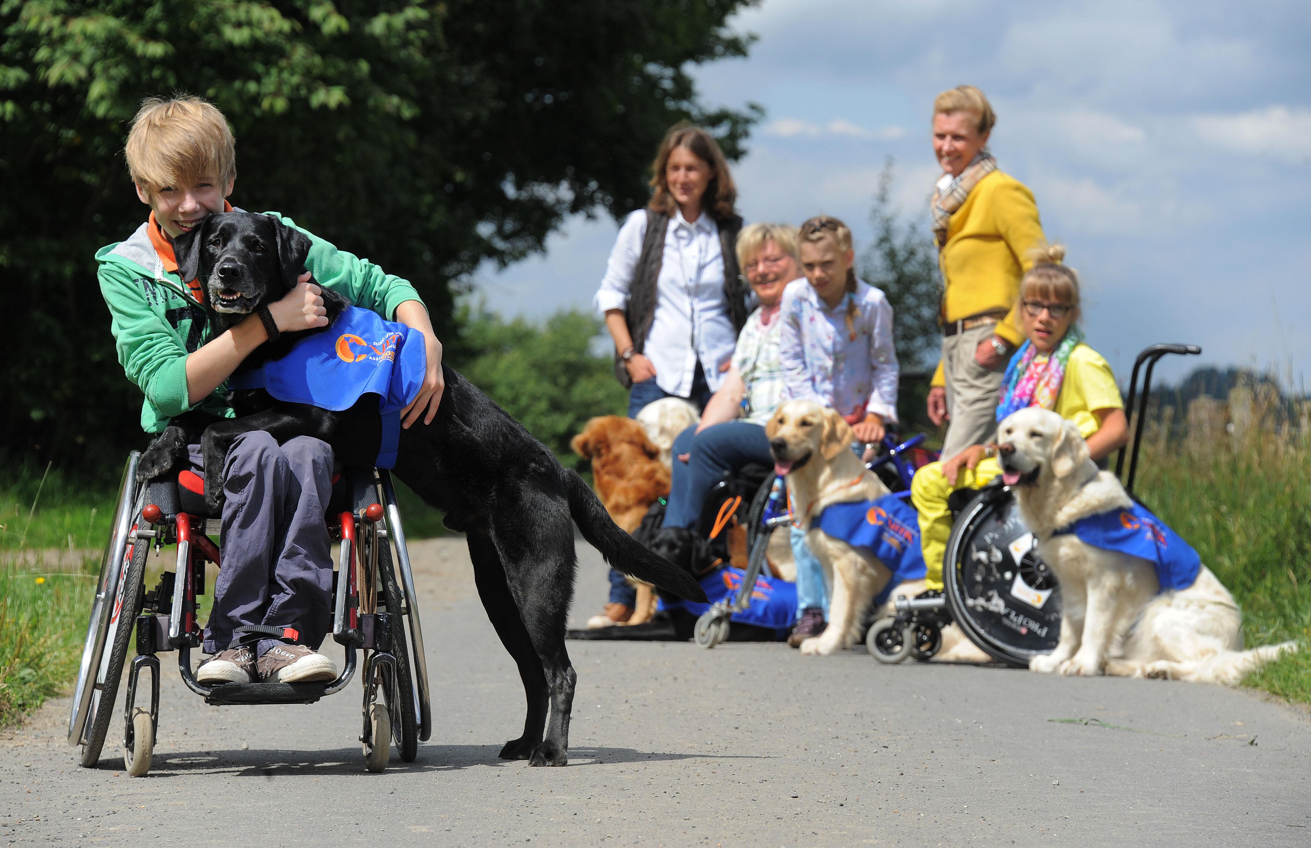 Junge im Rollstuhl mit seinem Assistenzhund von VITA